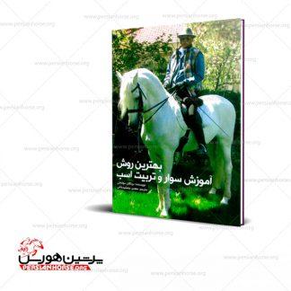 بهترین روش آموزش سوار و تربیت اسب