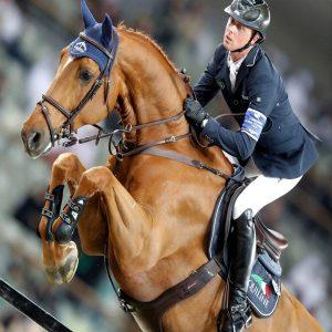 اسب های ورزشی
